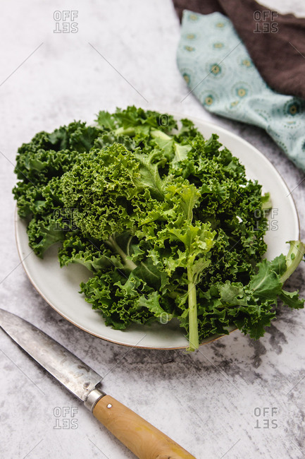 Plate with green leaves of ripe kale placed near knife on gray table near napkins