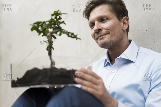 Businessman watching bonsai grow in transparent box