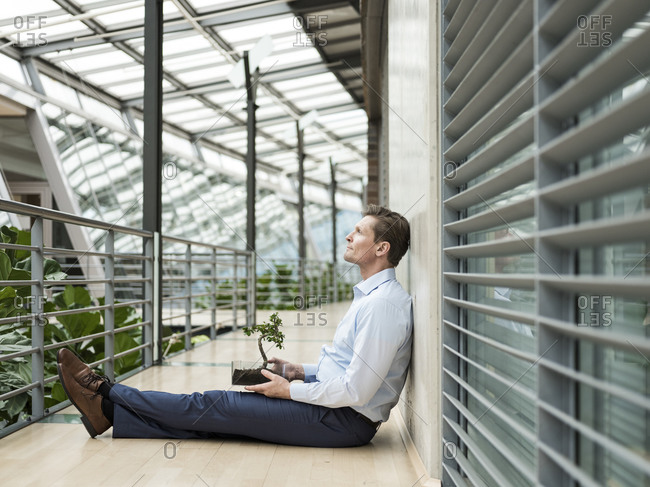 Businessman in green atrium- sitting on gallery- with bonsai on his lap
