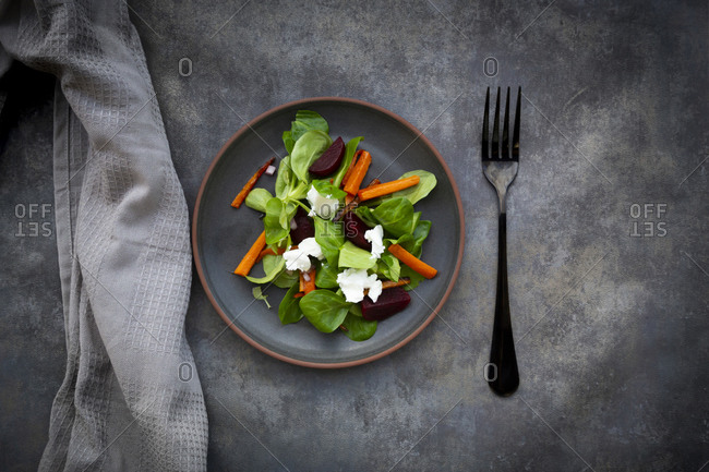Plate of corn salad with roasted carrot strips- beetroot- Spanish onions and goat cream cheese