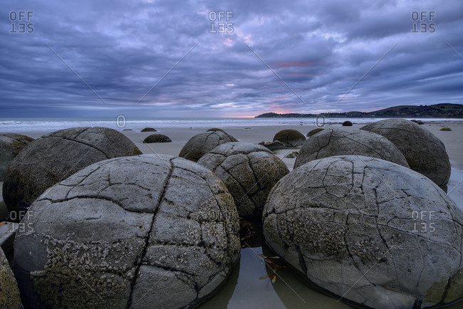 New Zealand- Otago- Moeraki- Close-up of cluster of Moeraki Boulders lying on Koekohe Beach at cloudy dusk
