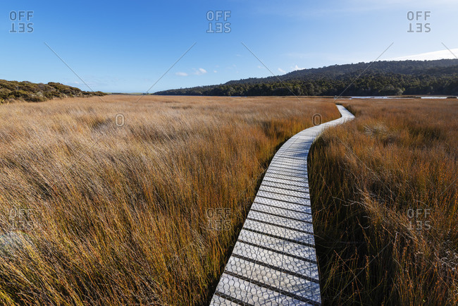 New Zealand- Otago- Clutha District- Empty Tautuku Estuary Walkway surrounded by tall brown grass