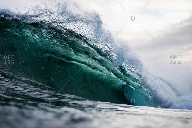 Cresting wave in the ocean