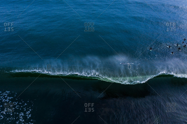 Aerial view of bird's flying over waves in the blue ocean