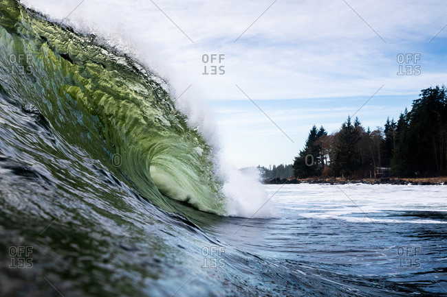 Curling green wave in the ocean