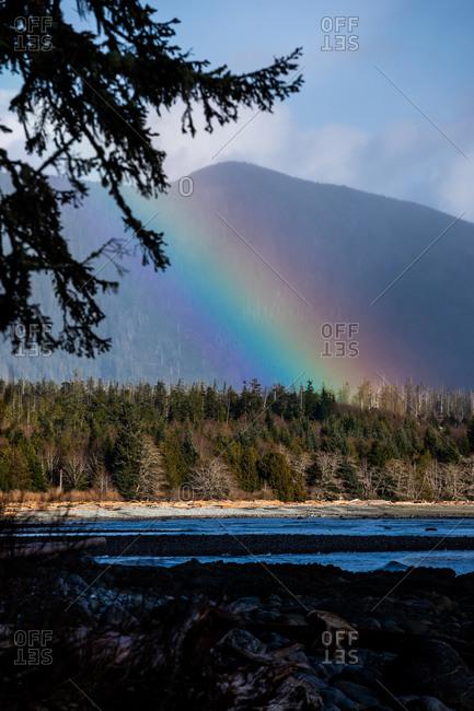 Rainbow over mountainside forest