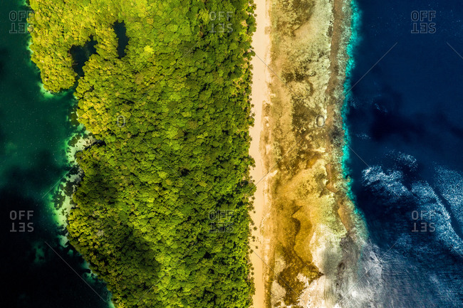 Aerial view of the shore of the island Kakaban, Indonesia.