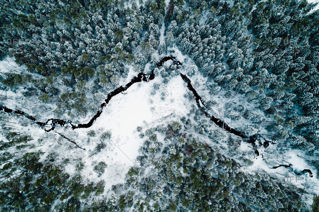 Aerial view of spring river Brazuole in Lithuania forest during winter time.