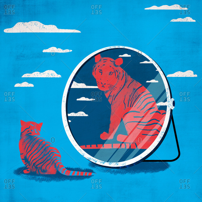 Little cat looks up against compares the mirror image of an adult tiger isolated on blue sky background