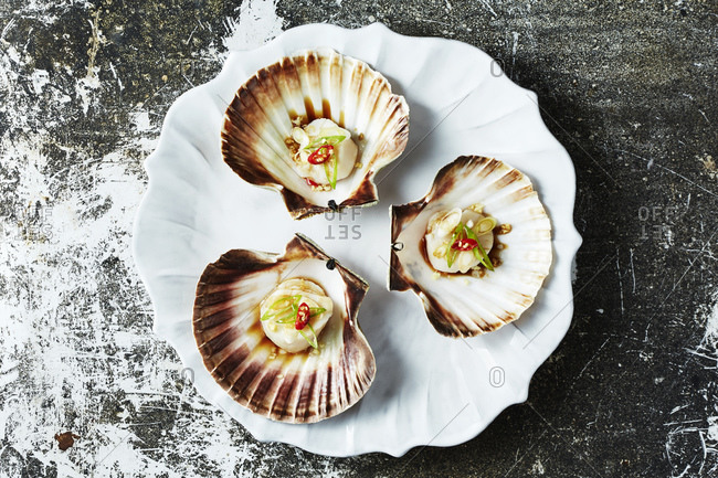 Still life with cooked scallops in scallop seashells, overhead view