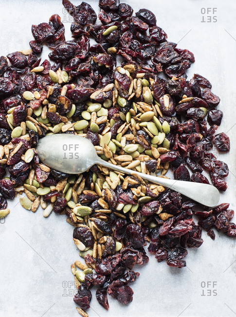 Teaspoon on seeds and dried cranberries