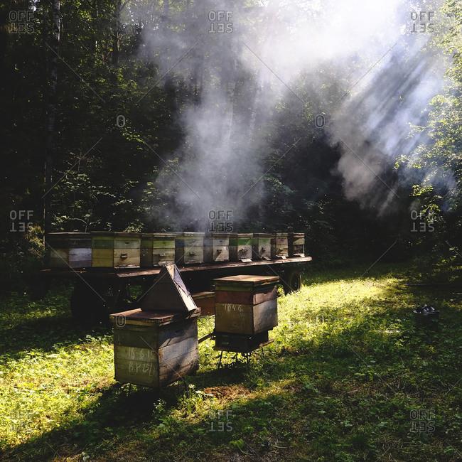 Beehive farm, Ural, Bashkortostan, Russia