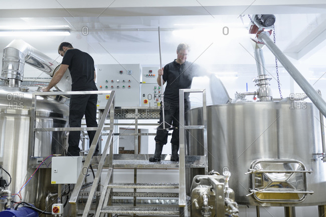Brewer inspecting brew mix in small brewery