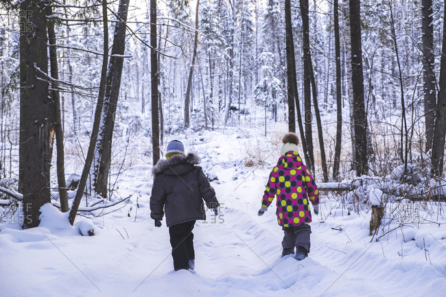 Boy and girl walking in snow covered forest, rear view