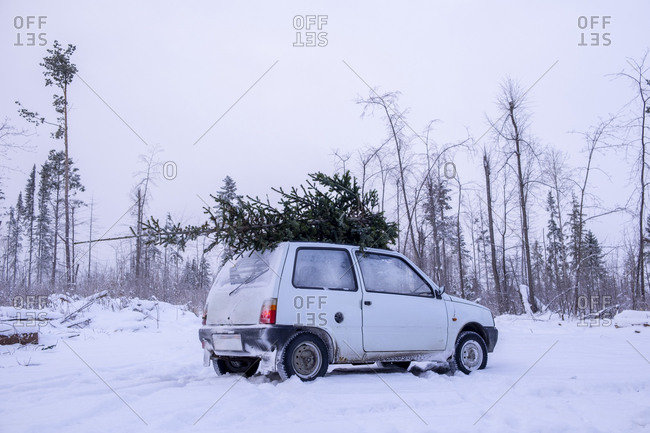 Parked car with christmas tree on roof in snow covered landscape