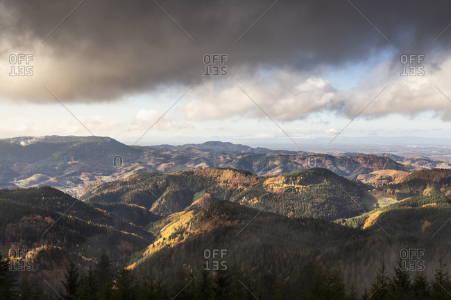 View into black forest, Baiersbronn, Baden-Wurttemberg, Germany