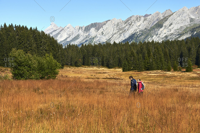 Hikers on grassy field, mountains in background, Manigod, Rhone-Alpes, France