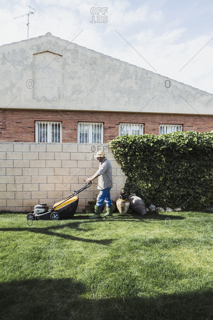 Man mowing garden lawn with lawn mower