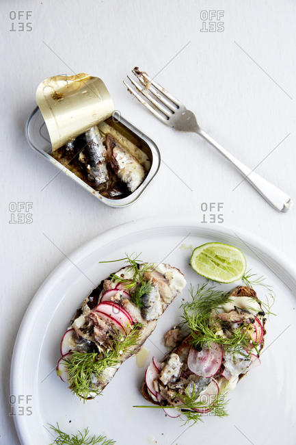 Two open sandwiches with sardines, radish and fresh dill on a white plate and background,