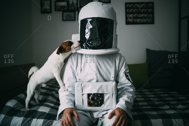 Pet dog licking astronaut on bed