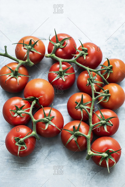 Red vine tomatoes - Offset Collection