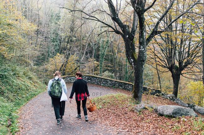 Friends walking in countryside, Rezzago, Lombardy, Italy