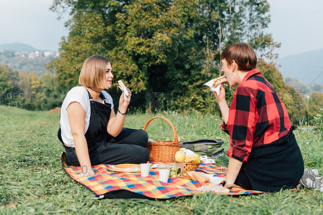 Friends having picnic, Rezzago, Lombardy, Italy