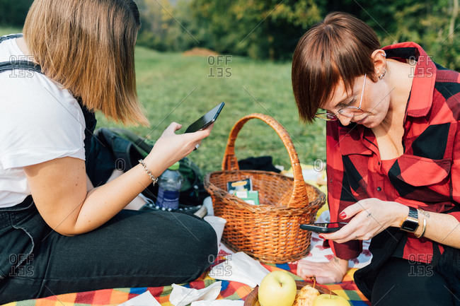Friends texting at picnic, Rezzago, Lombardy, Italy