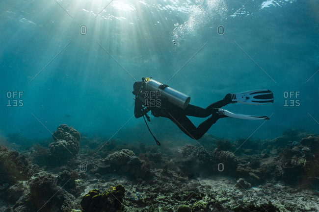 Underwater view of diver exploring the rich waters in Raja Ampat, Sorong, Nusa Tenggara Barat, Indonesia