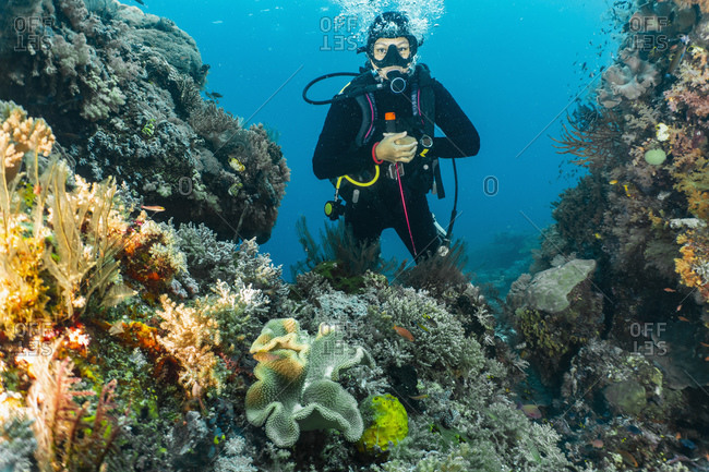 Diver exploring clear tropical water of Raja Ampat, Sorong, Nusa Tenggara Barat, Indonesia