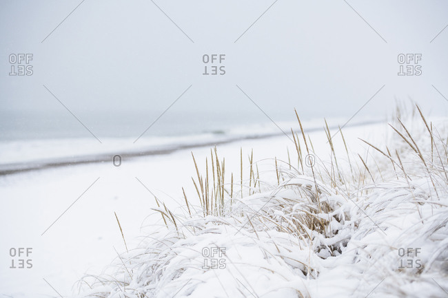 Snow covered beach during winter snow