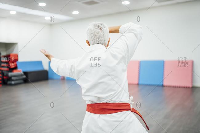 Senior Karate master performing combat techniques