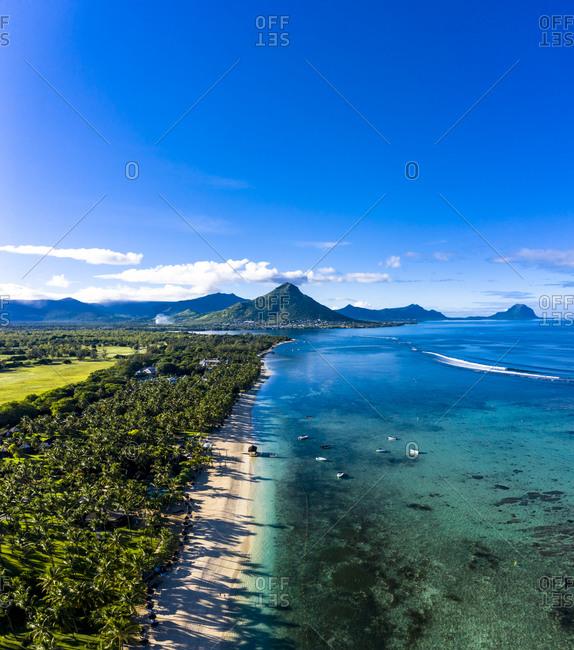 Mauritius- Black River- Flic-en-Flac- Aerial view of palm trees along coastal beach in summer withTourelleduTamarinmountain in distant background