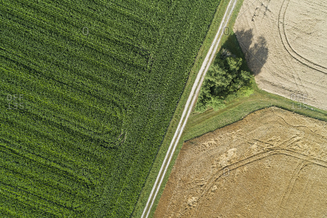 Germany- Bavaria- Drone view of dirt road cutting through countryside fields in summer