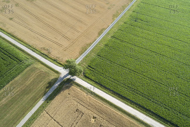 Germany- Bavaria- Drone view of road intersection between countryside fields in summer
