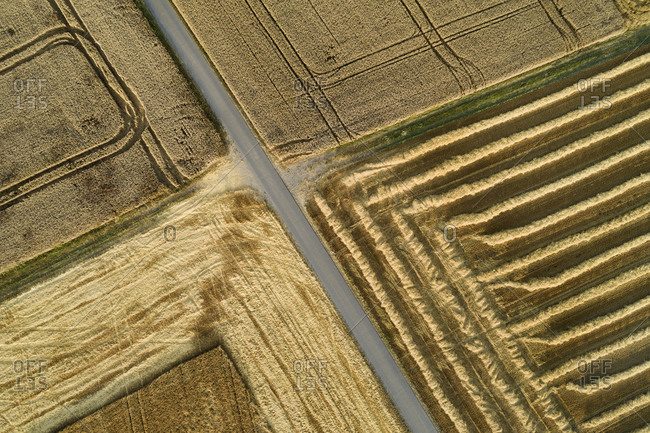 Germany- Bavaria- Drone view of country road cutting through yellow countryside fields in summer