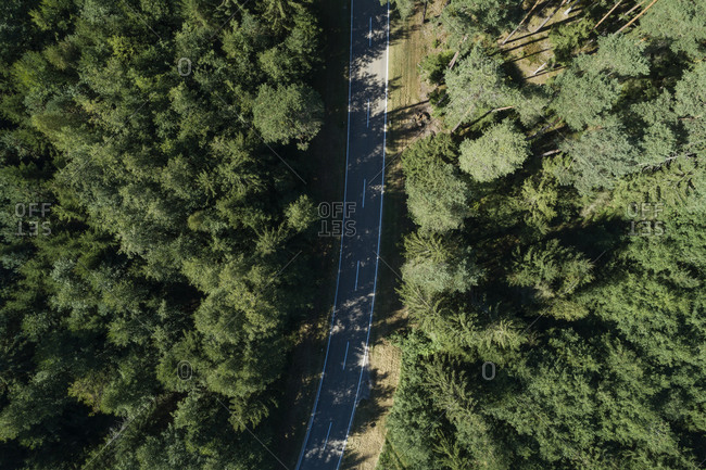 Germany- Bavaria- Drone view of highway cutting through green pine forest