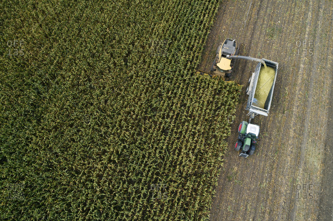 Germany- Bavaria- Drone view of combine and tractor harvesting corn