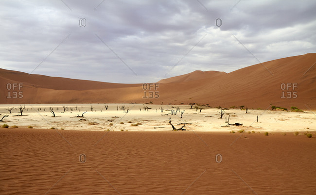Namibia- Sossusvlei pan surrounded by desert dunes