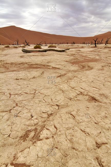 Namibia- Dry soil at Deadvlei clay pan