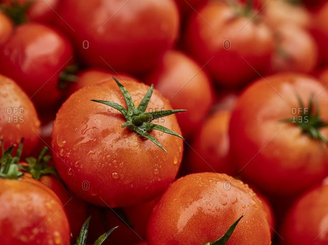 Morocco- Heap of fresh ripe tomatoes