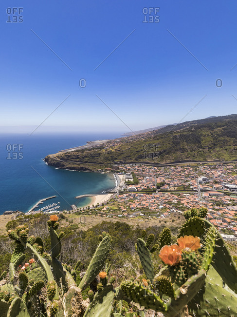 Portugal- Madeira- Machico- Cacti growing on top of coastal hill with town in background