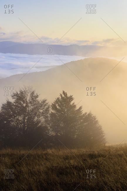 Ukraine, Zakarpattia region, Carpathians, Borzhava, Pryslip Pass, Mountain landscape in morning fog