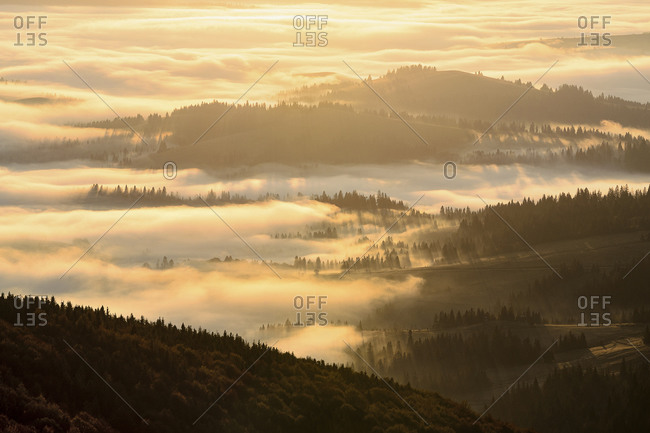 Ukraine, Zakarpattia region, Carpathians, Borzhava, Mountain landscape in fog illuminated by morning sunlight