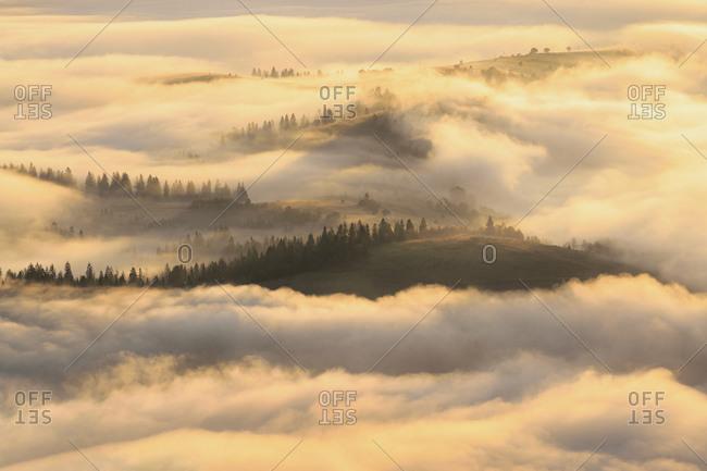 Ukraine, Zakarpattia region, Carpathians, Borzhava, Foggy hills of Carpathian Mountains at sunrise