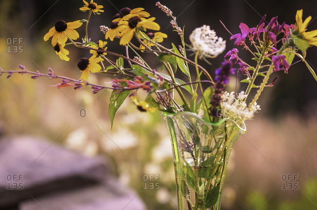 Fresh picked wild flowers in a glass vase