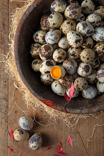 Overhead view of quail eggs on board.