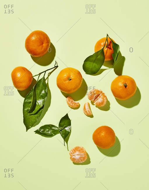 Clementines with Leaves on Bright Green
