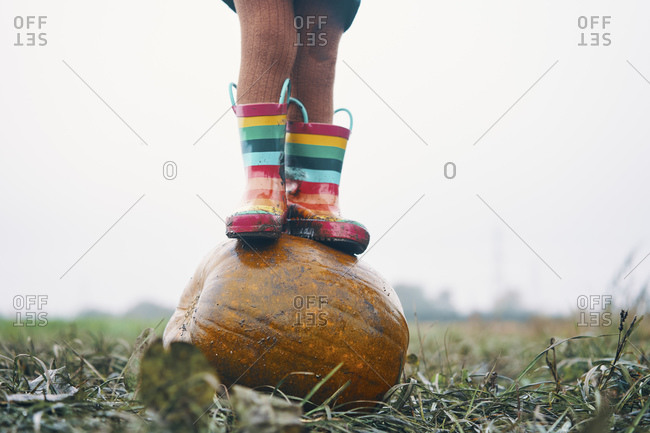 A child's feet in stripy wellies standing on a pumpkin in a field.