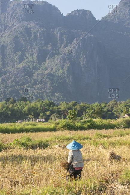 Vang Vieng, Laos - November 23, 2014: Farmer working in the country
